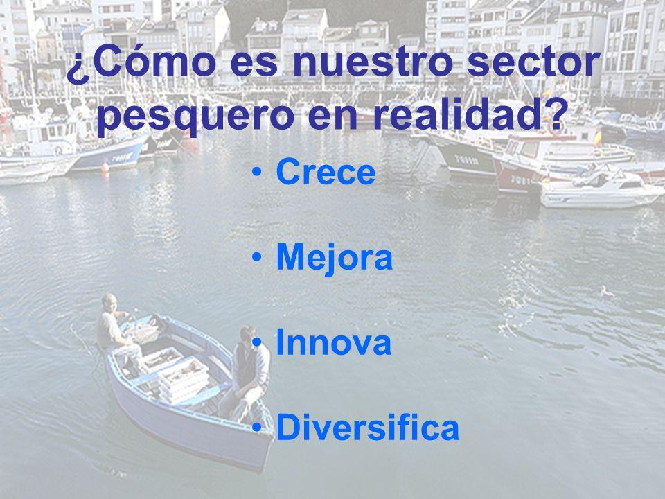 ¿Cómo es nuestro sector pesquero en realidad Crece Mejora Innova Diversifica
