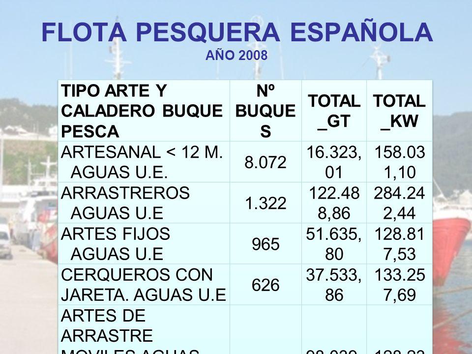 FLOTA PESQUERA ESPAÑOLA AÑO 2008