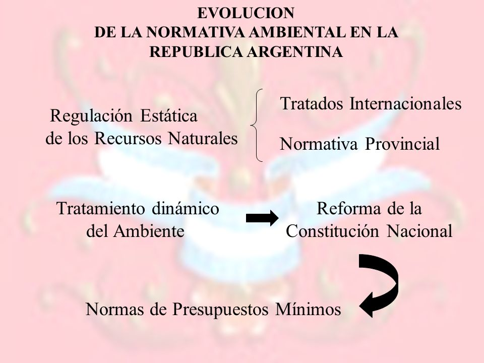 EVOLUCION DE LA NORMATIVA AMBIENTAL EN LA REPUBLICA ARGENTINA Regulación Estática de los Recursos Naturales Tratamiento dinámico del Ambiente Tratados