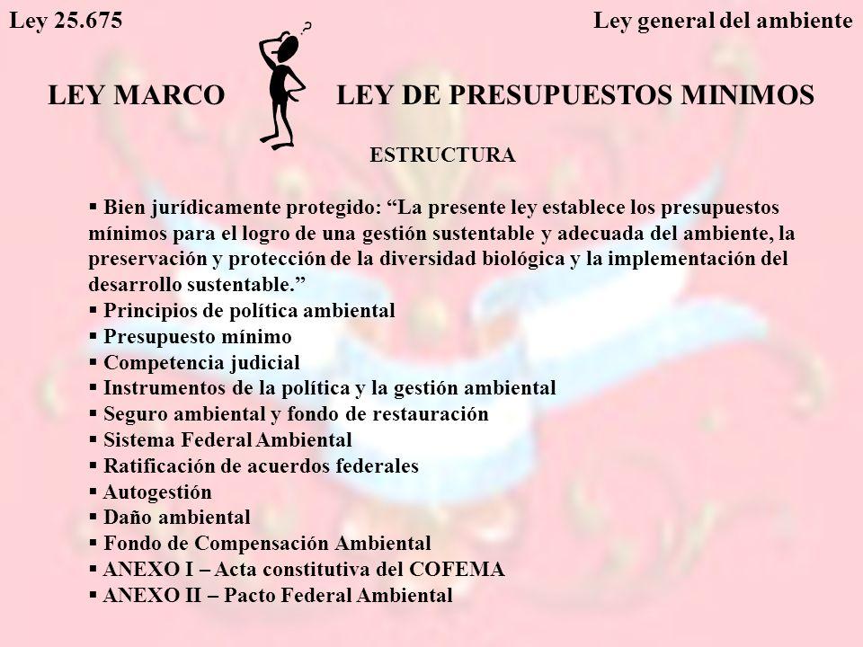 Ley 25.675 Ley general del ambiente LEY MARCOLEY DE PRESUPUESTOS MINIMOS ESTRUCTURA Bien jurídicamente protegido: La presente ley establece los presup