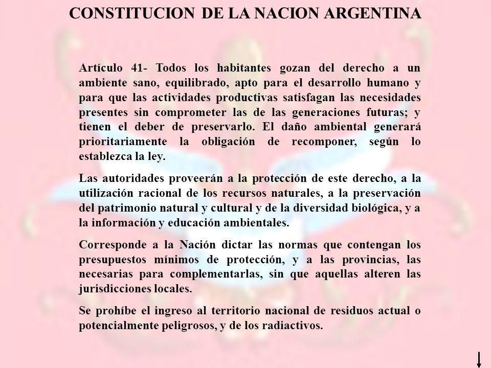 CONSTITUCION DE LA NACION ARGENTINA Artículo 41- Todos los habitantes gozan del derecho a un ambiente sano, equilibrado, apto para el desarrollo human
