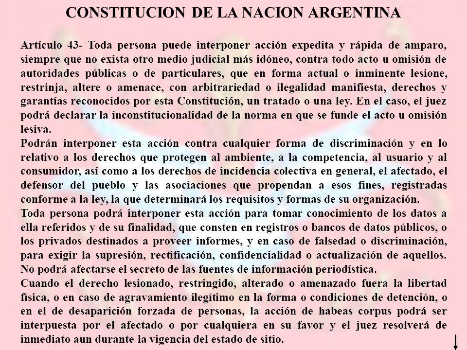 CONSTITUCION DE LA NACION ARGENTINA Artículo 43- Toda persona puede interponer acción expedita y rápida de amparo, siempre que no exista otro medio ju