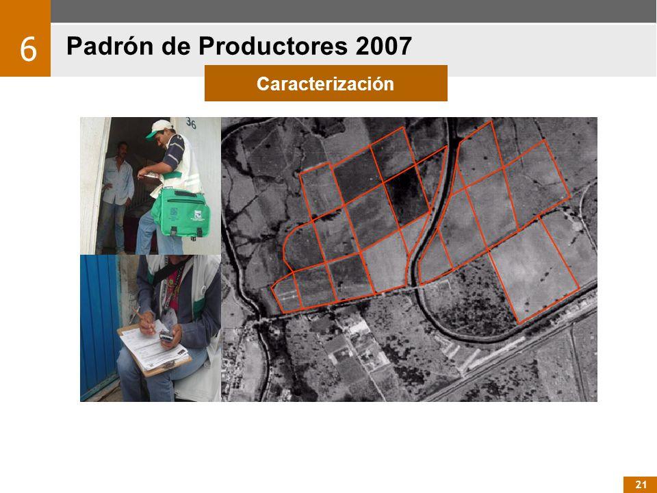 21 Padrón de Productores 2007 6 Caracterización