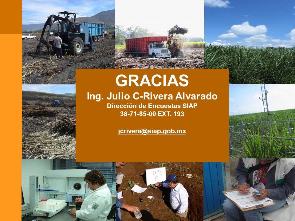 GRACIAS 31 GRACIAS Ing. Julio C-Rivera Alvarado Dirección de Encuestas SIAP 38-71-85-00 EXT. 193 jcrivera@siap.gob.mx