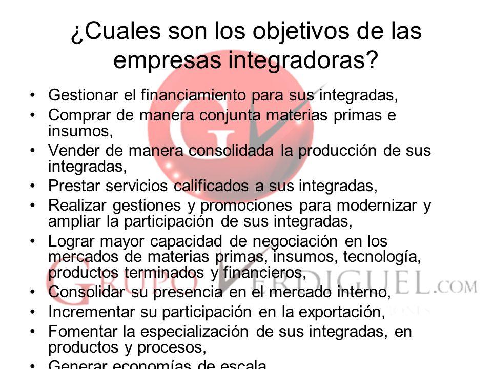 14 ¿Cuales son los objetivos de las empresas integradoras.