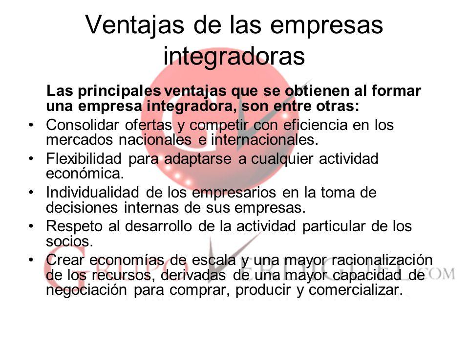 17 Ventajas de las empresas integradoras Las principales ventajas que se obtienen al formar una empresa integradora, son entre otras: Consolidar ofertas y competir con eficiencia en los mercados nacionales e internacionales.