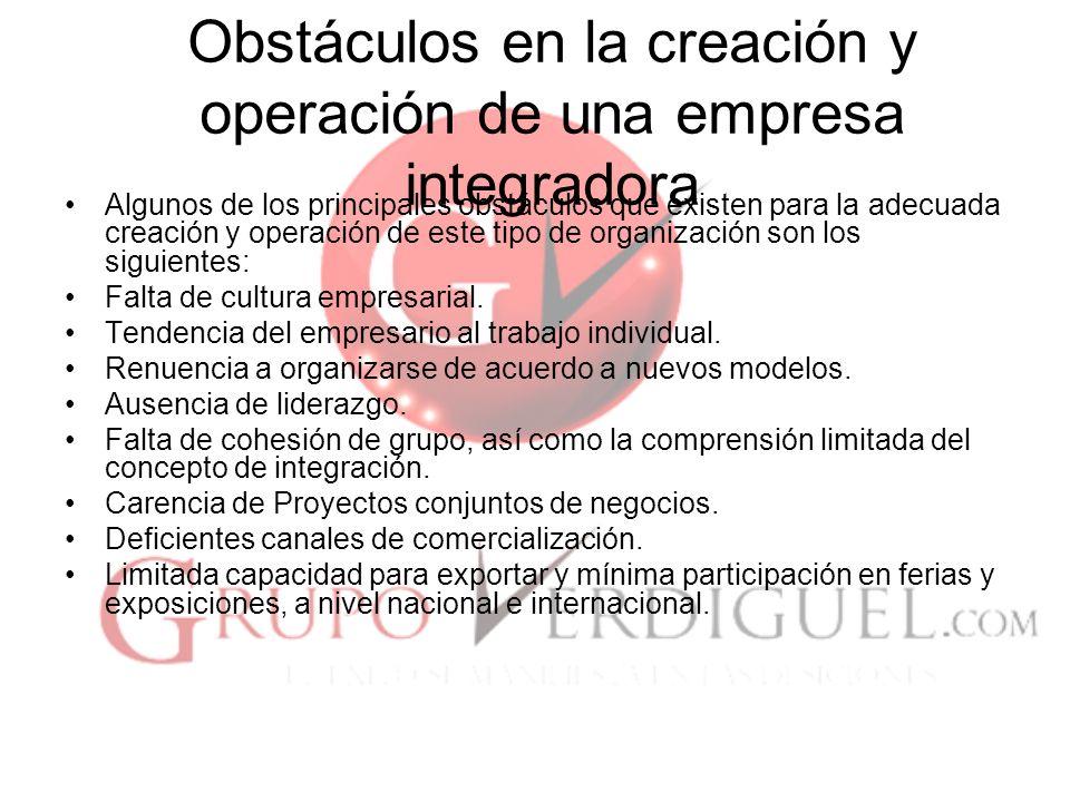 24 Obstáculos en la creación y operación de una empresa integradora Algunos de los principales obstáculos que existen para la adecuada creación y operación de este tipo de organización son los siguientes: Falta de cultura empresarial.