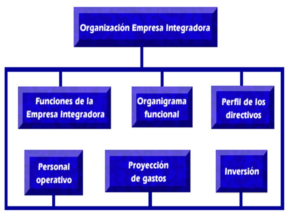 18 Régimen fiscal Para efectos del Impuesto sobre la Renta, las empresas integradoras pueden tributar en el siguiente régimen: Ley del Impuesto sobre la Renta A partir de 2002, las disposiciones para las Empresas Integradoras se encuentran en los Artículos 79 al 85, en el Capítulo VII, del Título II de dicha Ley.