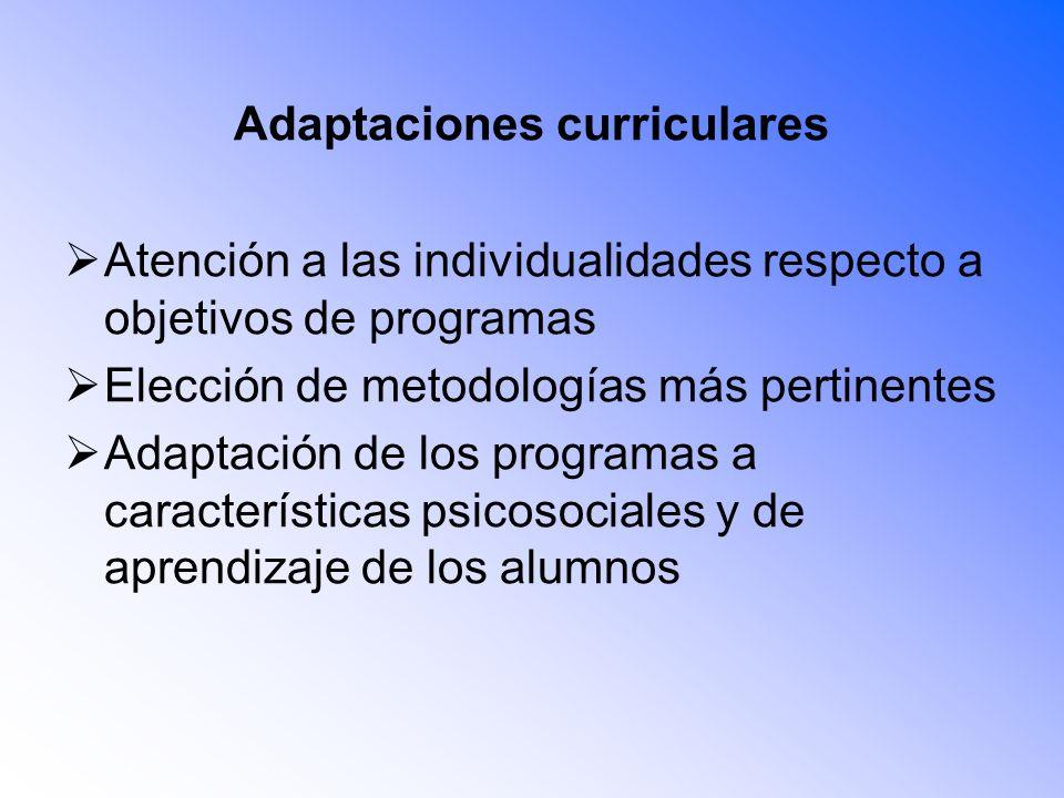 Adaptaciones curriculares Atención a las individualidades respecto a objetivos de programas Elección de metodologías más pertinentes Adaptación de los