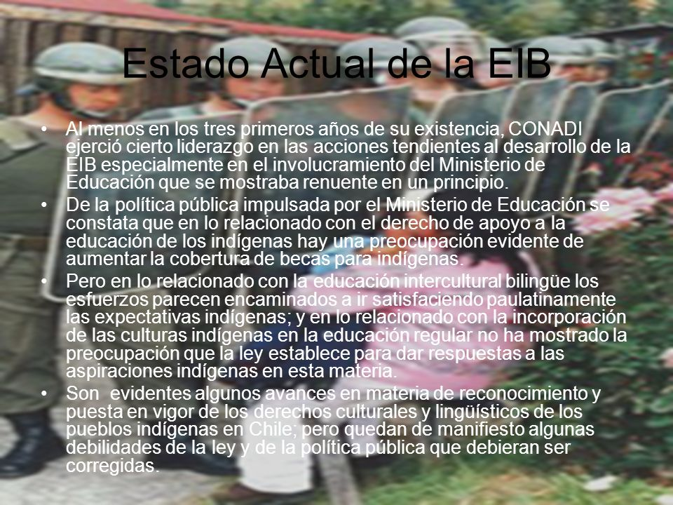 Estado Actual de la EIB Al menos en los tres primeros años de su existencia, CONADI ejerció cierto liderazgo en las acciones tendientes al desarrollo de la EIB especialmente en el involucramiento del Ministerio de Educación que se mostraba renuente en un principio.