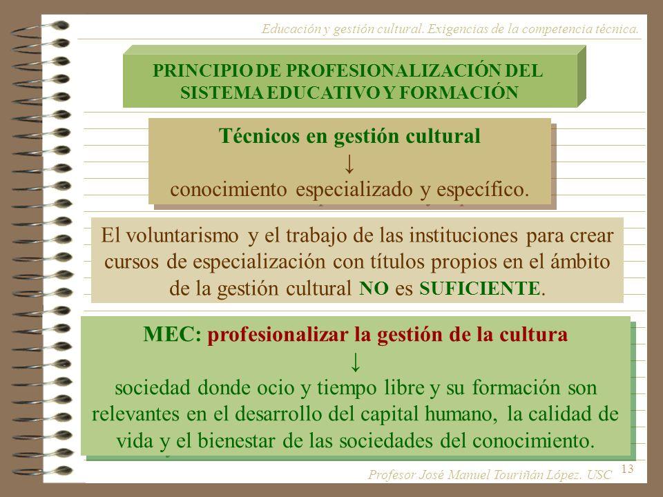 13 PRINCIPIO DE PROFESIONALIZACIÓN DEL SISTEMA EDUCATIVO Y FORMACIÓN Técnicos en gestión cultural conocimiento especializado y específico. Técnicos en