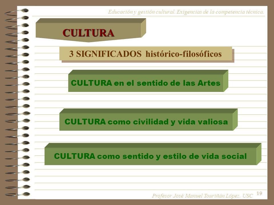 19 3 SIGNIFICADOS histórico-filosóficos CULTURA en el sentido de las Artes CULTURA como civilidad y vida valiosa CULTURA como sentido y estilo de vida