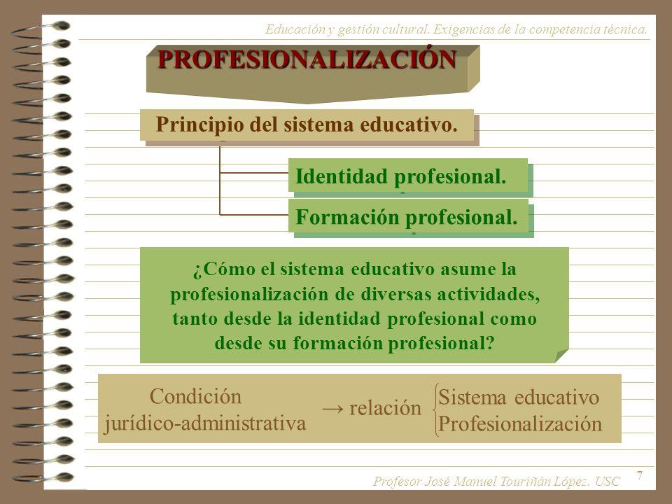 7 Principio del sistema educativo. Educación y gestión cultural. Exigencias de la competencia técnica.PROFESIONALIZACIÓN Identidad profesional. Formac