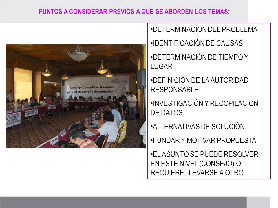PROCESO DE RENOVACIÓN DE LOS CCDS (2005 – 2007) DETERMINACIÓN DEL PROBLEMA IDENTIFICACIÓN DE CAUSAS DETERMINACIÓN DE TIEMPO Y LUGAR DEFINICIÓN DE LA A