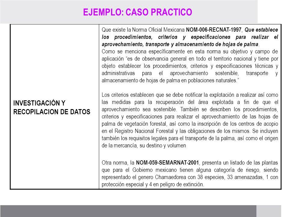 PROCESO DE RENOVACIÓN DE LOS CCDS (2005 – 2007) INVESTIGACIÓN Y RECOPILACION DE DATOS Que existe la Norma Oficial Mexicana NOM-006-RECNAT-1997, Que es