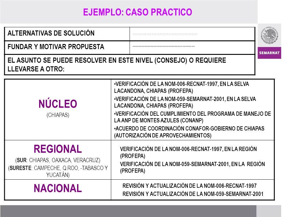 PROCESO DE RENOVACIÓN DE LOS CCDS (2005 – 2007) EL ASUNTO SE PUEDE RESOLVER EN ESTE NIVEL (CONSEJO) O REQUIERE LLEVARSE A OTRO: FUNDAR Y MOTIVAR PROPU