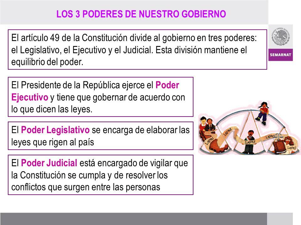 PROCESO DE RENOVACIÓN DE LOS CCDS (2005 – 2007) El artículo 49 de la Constitución divide al gobierno en tres poderes: el Legislativo, el Ejecutivo y e
