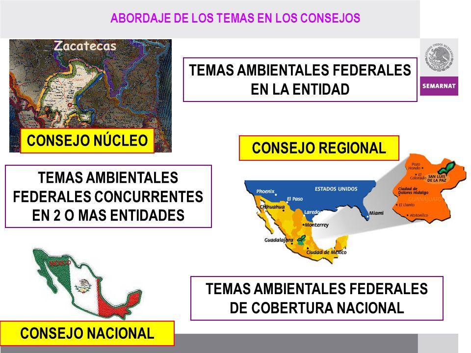 PROCESO DE RENOVACIÓN DE LOS CCDS (2005 – 2007) CONSEJO NÚCLEO TEMAS AMBIENTALES FEDERALES EN LA ENTIDAD CONSEJO REGIONAL CONSEJO NACIONAL TEMAS AMBIE