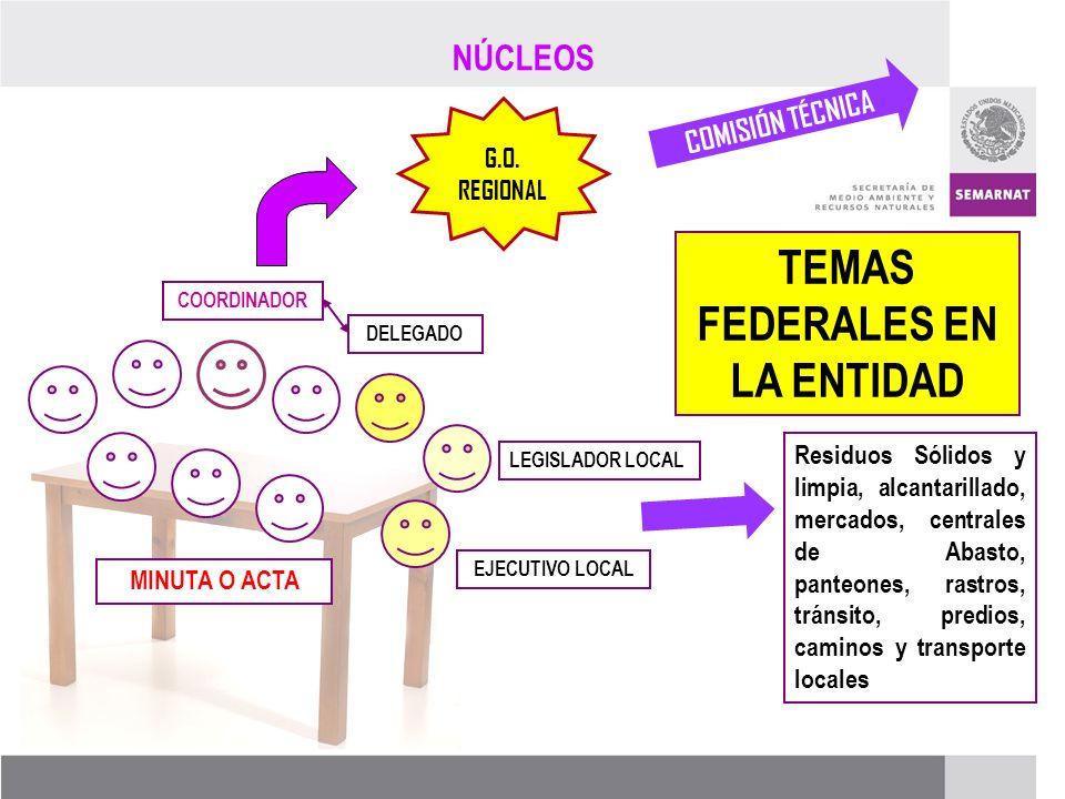 PROCESO DE RENOVACIÓN DE LOS CCDS (2005 – 2007) AGENDA VERDE AGENDA AZUL AGENDA GRIS TRANSVERSALIDAD COMISIONES TÉCNICAS RECOMENDACIÓN G.O.