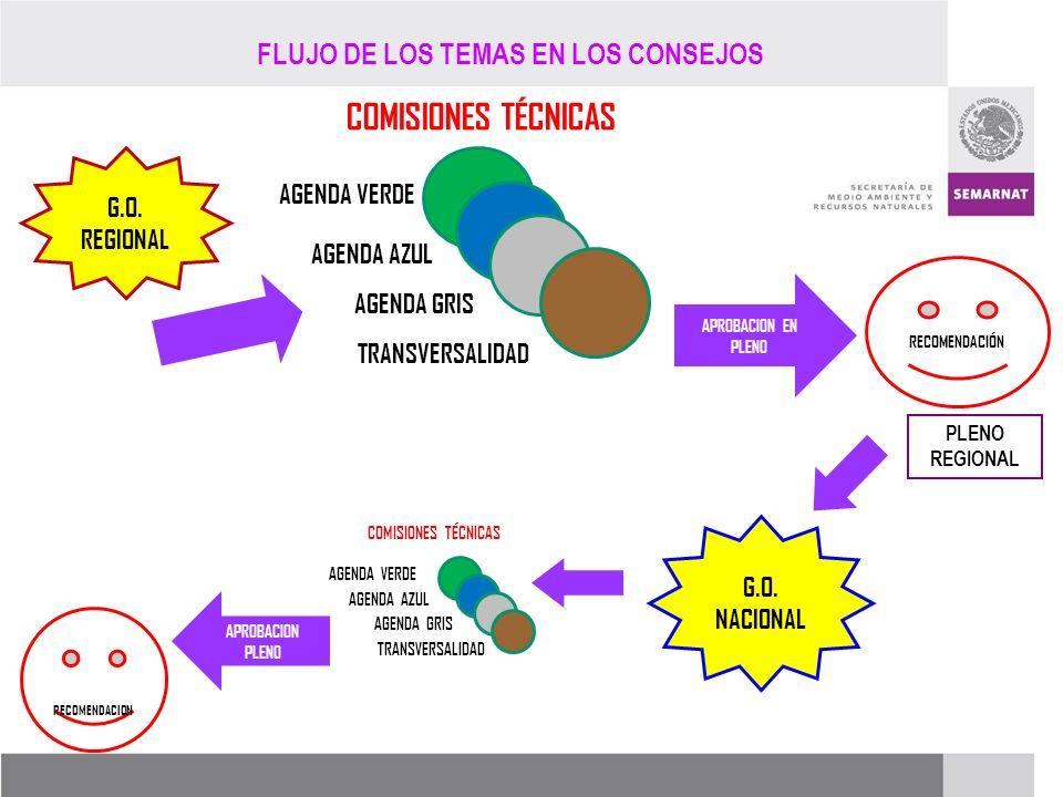 PROCESO DE RENOVACIÓN DE LOS CCDS (2005 – 2007) AGENDA VERDE AGENDA AZUL AGENDA GRIS TRANSVERSALIDAD COMISIONES TÉCNICAS RECOMENDACIÓN G.O. REGIONAL A