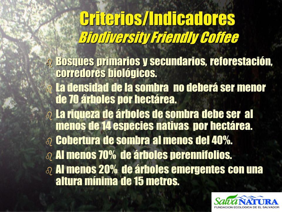 Criterios/Indicadores Biodiversity Friendly Coffee b Bosques primarios y secundarios, reforestación, corredores biológicos. b b La densidad de la somb