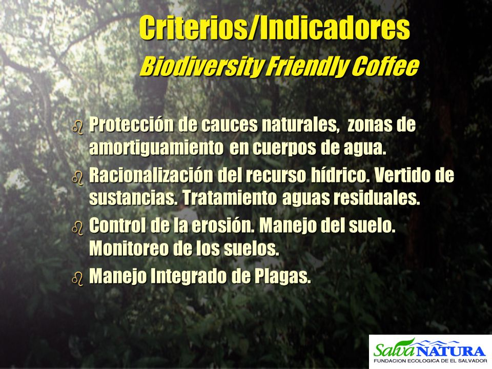 Criterios/Indicadores Biodiversity Friendly Coffee b Protección de cauces naturales, zonas de amortiguamiento en cuerpos de agua. b Racionalización de