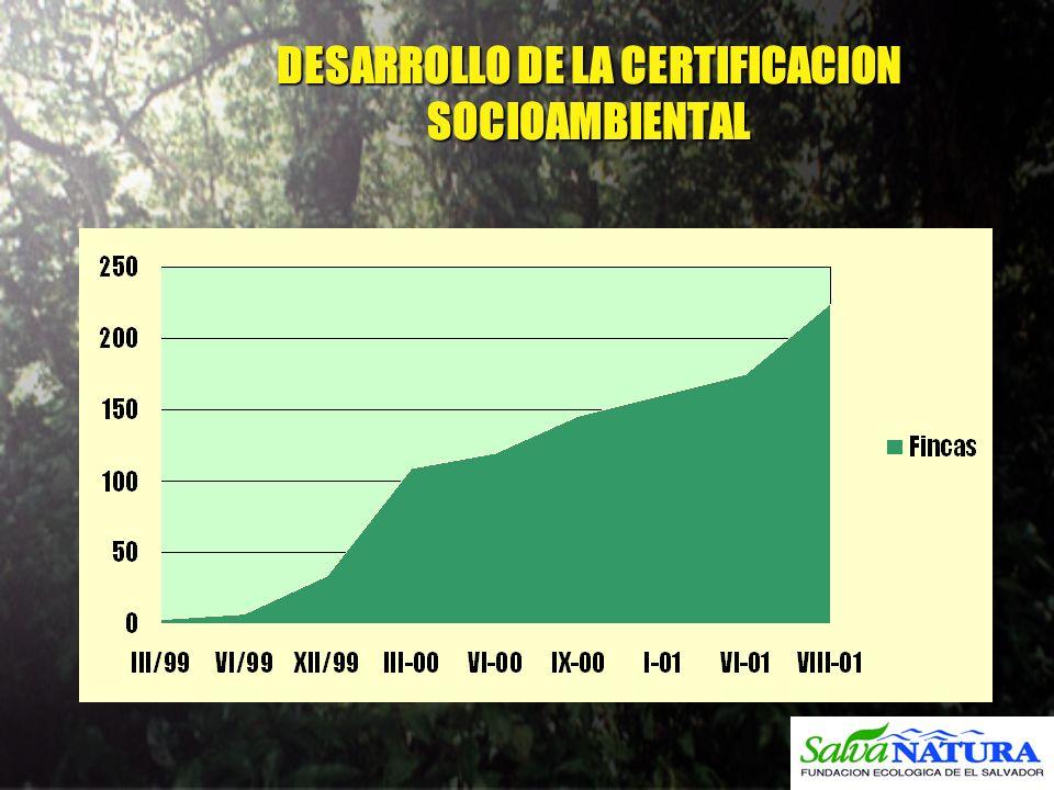 DESARROLLO DE LA CERTIFICACION SOCIOAMBIENTAL