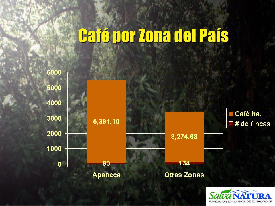 Café por Zona del País