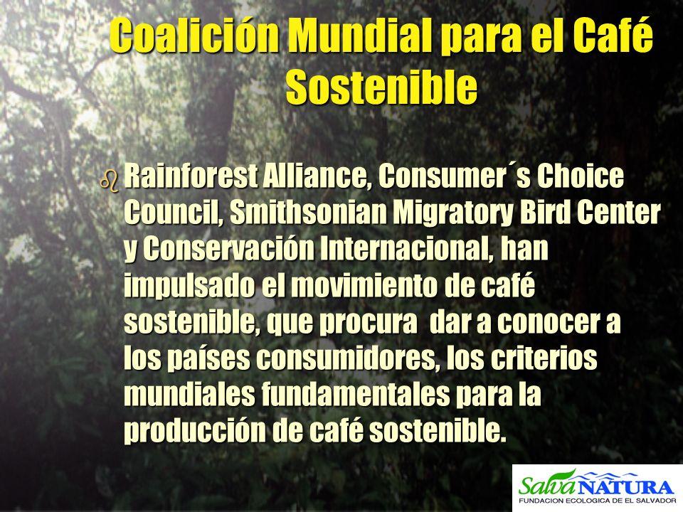 Coalición Mundial para el Café Sostenible b Rainforest Alliance, Consumer´s Choice Council, Smithsonian Migratory Bird Center y Conservación Internaci