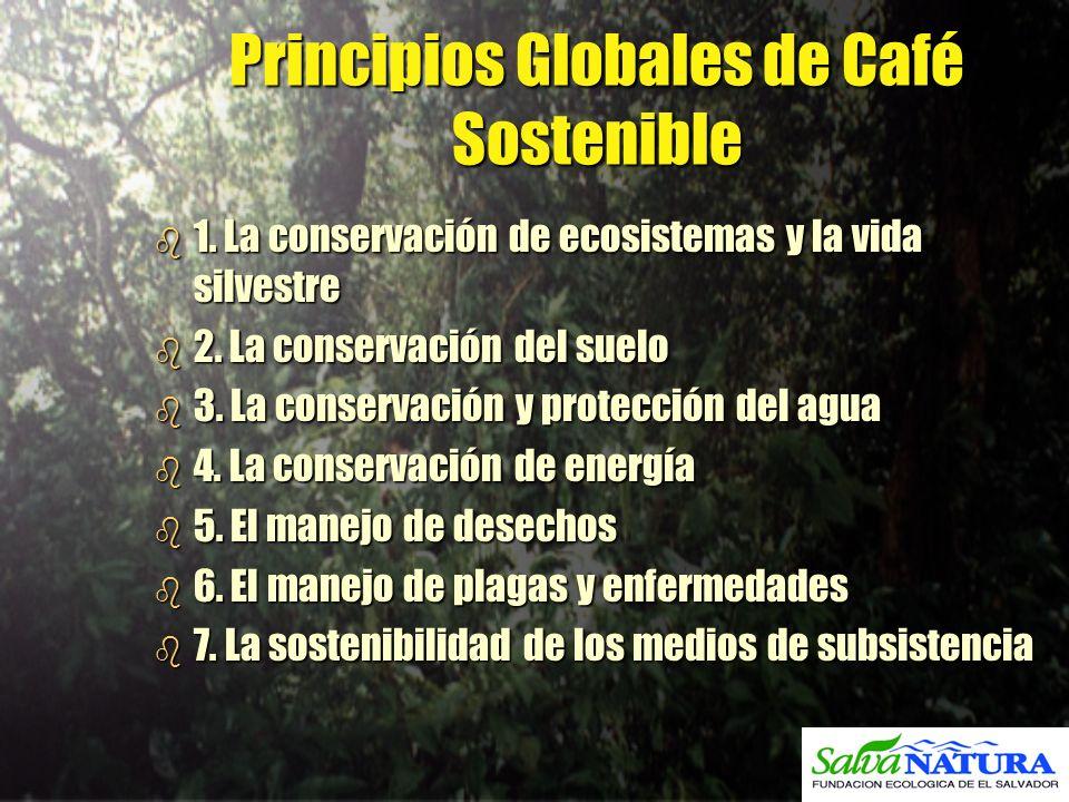 Principios Globales de Café Sostenible b 1. La conservación de ecosistemas y la vida silvestre b 2. La conservación del suelo b 3. La conservación y p