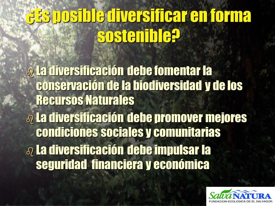 ¿Es posible diversificar en forma sostenible? b La diversificación debe fomentar la conservación de la biodiversidad y de los Recursos Naturales b La