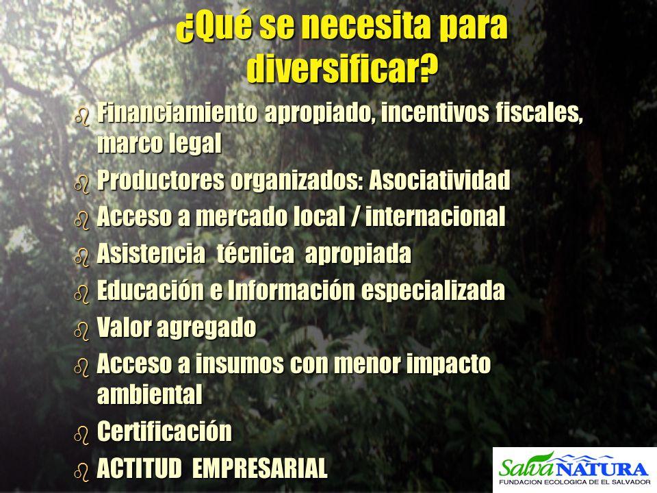 ¿Qué se necesita para diversificar? b Financiamiento apropiado, incentivos fiscales, marco legal b Productores organizados: Asociatividad b Acceso a m