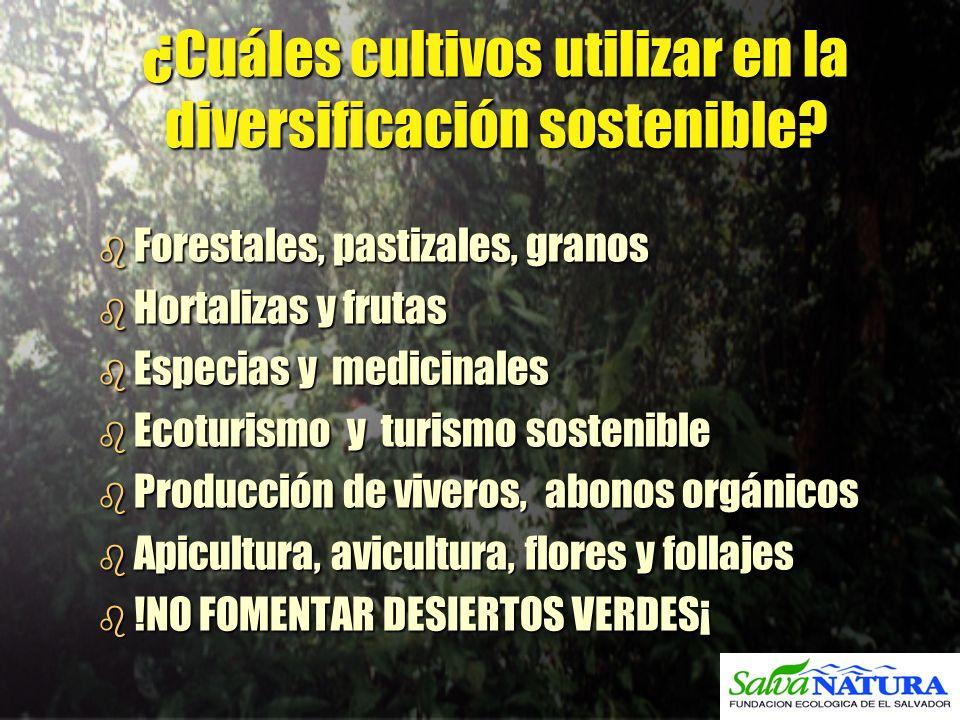¿Cuáles cultivos utilizar en la diversificación sostenible? b Forestales, pastizales, granos b Hortalizas y frutas b Especias y medicinales b Ecoturis