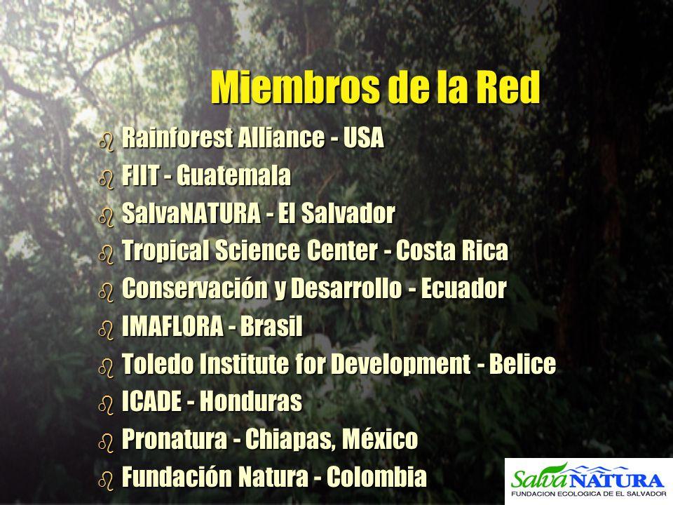 Miembros de la Red b Rainforest Alliance - USA b FIIT - Guatemala b SalvaNATURA - El Salvador b Tropical Science Center - Costa Rica b Conservación y
