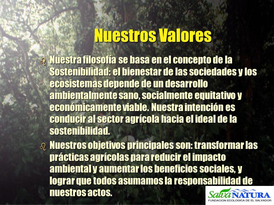 Nuestros Valores b Nuestra filosofía se basa en el concepto de la Sostenibilidad: el bienestar de las sociedades y los ecosistemas depende de un desar