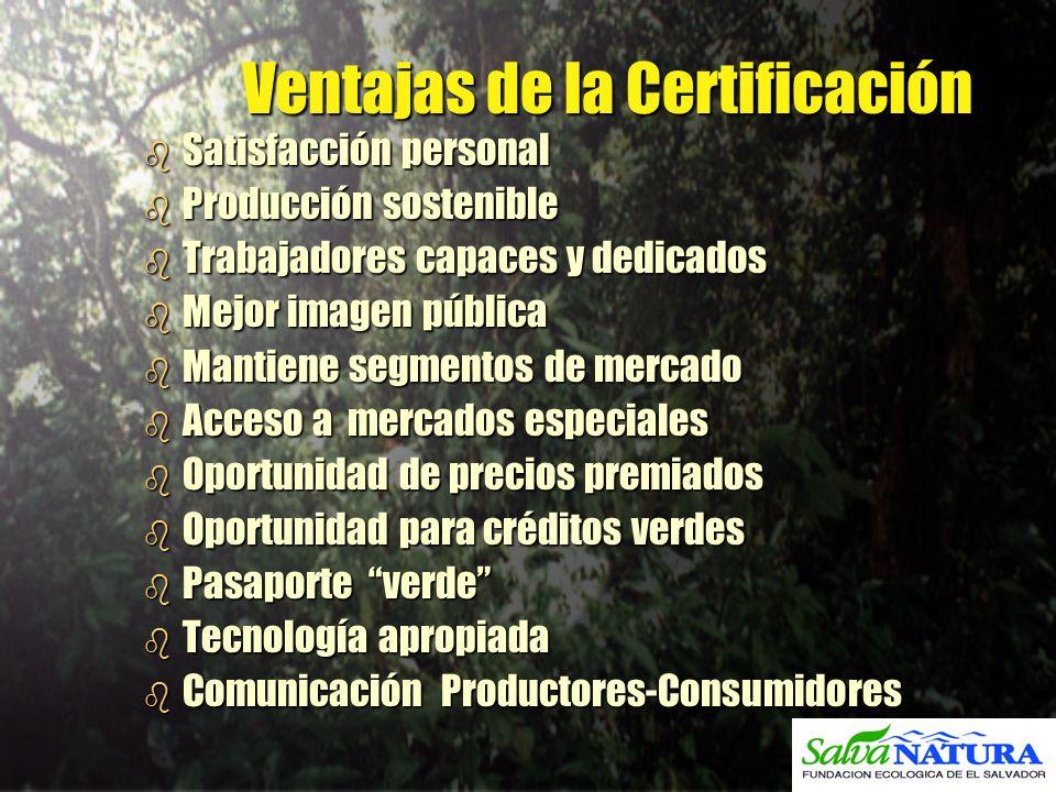 Ventajas de la Certificación b Satisfacción personal b Producción sostenible b Trabajadores capaces y dedicados b Mejor imagen pública b Mantiene segm