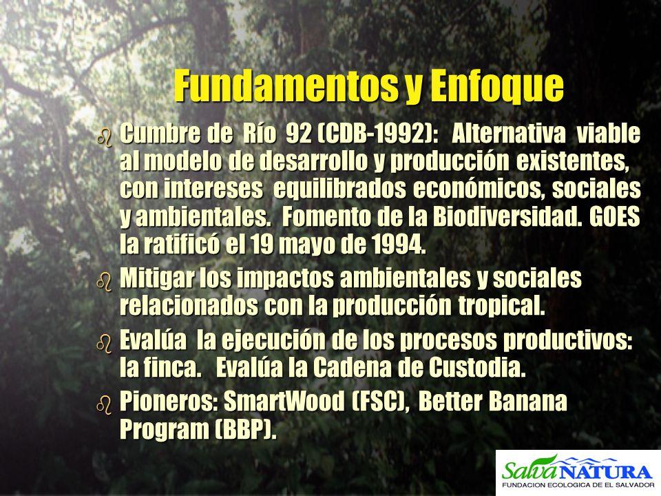 Fundamentos y Enfoque b Cumbre de Río 92 (CDB-1992): Alternativa viable al modelo de desarrollo y producción existentes, con intereses equilibrados ec