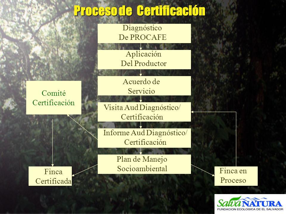Proceso de Certificación Proceso de Certificación Diagnóstico De PROCAFE Aplicación Del Productor Acuerdo de Servicio Visita Aud Diagnóstico/ Certific