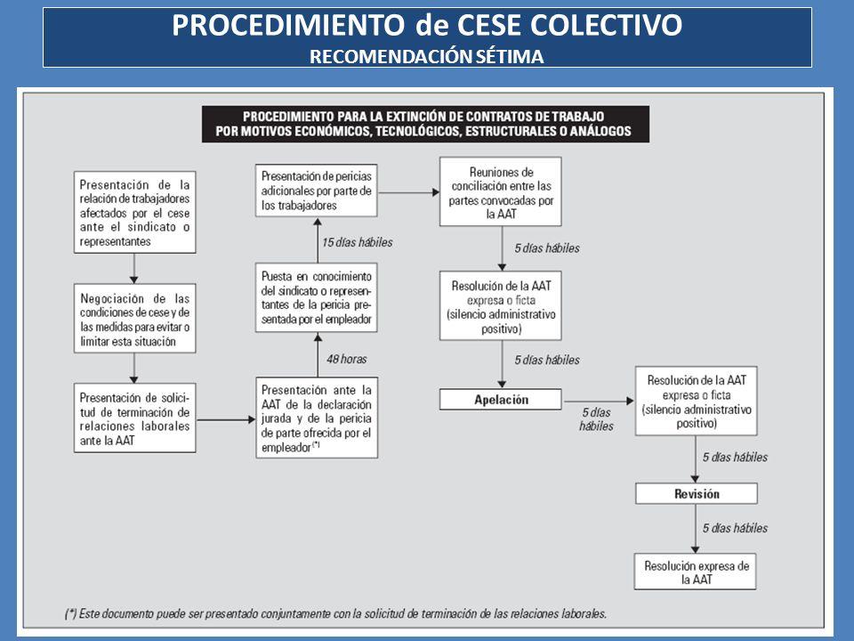 PROCEDIMIENTO de CESE COLECTIVO RECOMENDACIÓN SÉTIMA