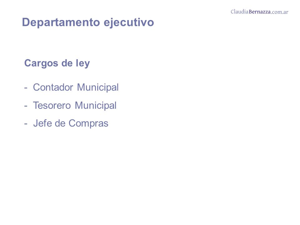 Departamento ejecutivo Cargos de ley - Contador Municipal - Tesorero Municipal - Jefe de Compras