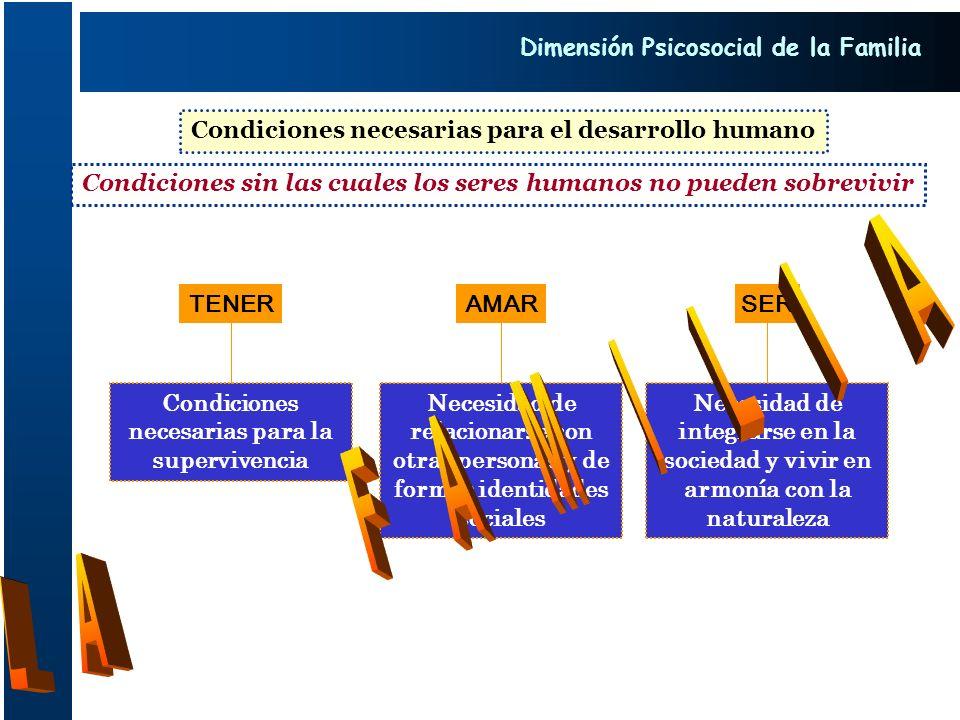 Condiciones necesarias para el desarrollo humano Condiciones sin las cuales los seres humanos no pueden sobrevivir TENER Condiciones necesarias para l