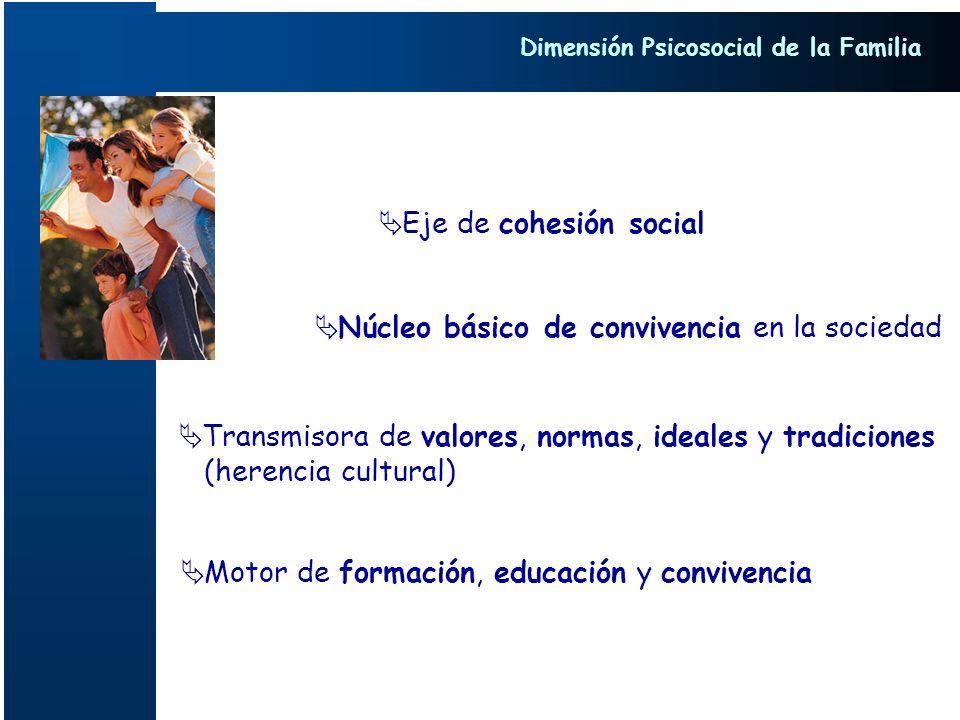 Eje de cohesión social Núcleo básico de convivencia en la sociedad Motor de formación, educación y convivencia Transmisora de valores, normas, ideales