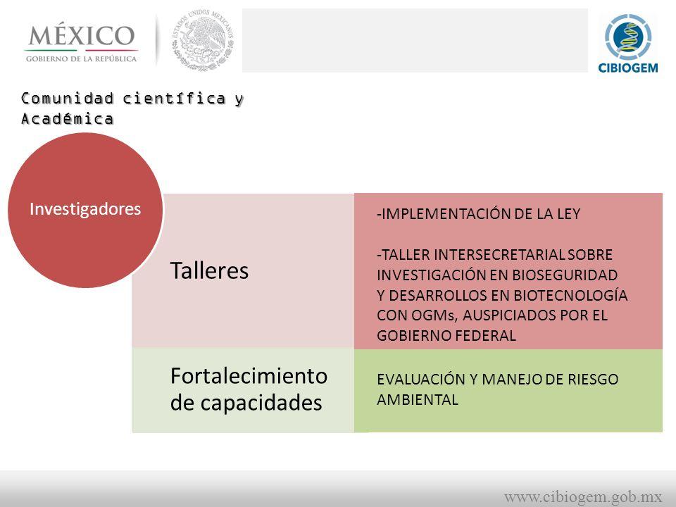 www.cibiogem.gob.mx Comunidad científica y Académica Talleres Fortalecimiento de capacidades Investigadores -IMPLEMENTACIÓN DE LA LEY -TALLER INTERSECRETARIAL SOBRE INVESTIGACIÓN EN BIOSEGURIDAD Y DESARROLLOS EN BIOTECNOLOGÍA CON OGMs, AUSPICIADOS POR EL GOBIERNO FEDERAL EVALUACIÓN Y MANEJO DE RIESGO AMBIENTAL