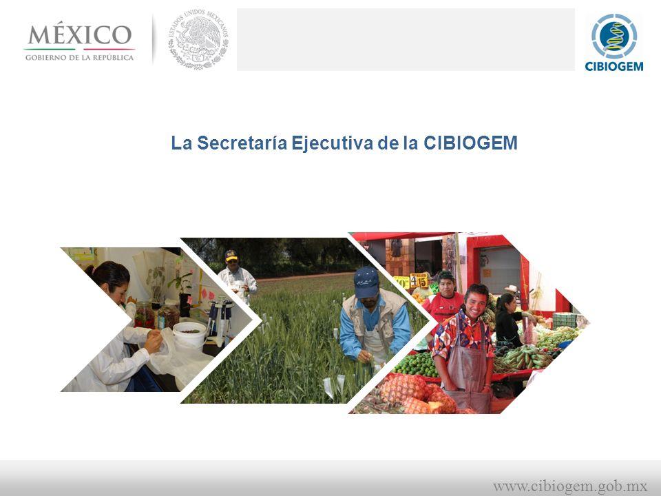 www.cibiogem.gob.mx La Secretaría Ejecutiva de la CIBIOGEM