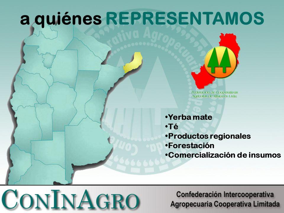 a quiénes REPRESENTAMOS Yerba mate Té Productos regionales Forestación Comercialización de insumos
