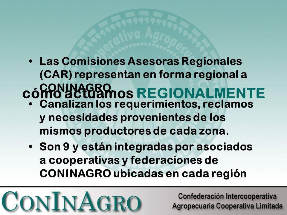 cómo actuamos REGIONALMENTE Las Comisiones Asesoras Regionales (CAR) representan en forma regional a CONINAGRO.