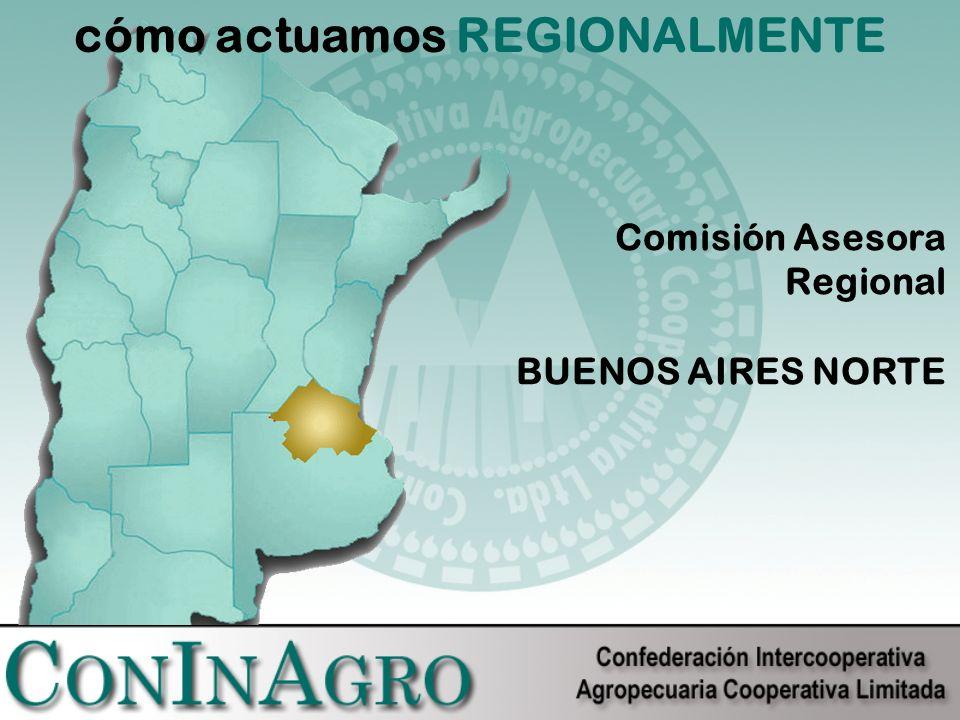 cómo actuamos REGIONALMENTE Comisión Asesora Regional BUENOS AIRES NORTE