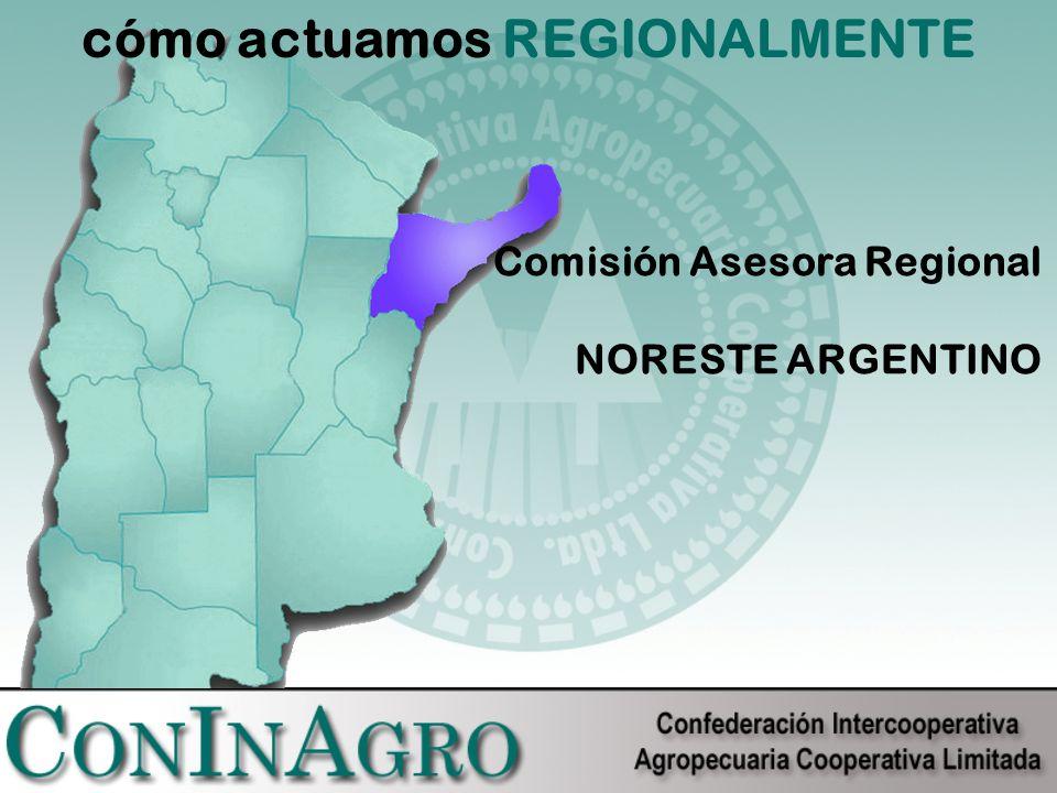 cómo actuamos REGIONALMENTE Comisión Asesora Regional NORESTE ARGENTINO