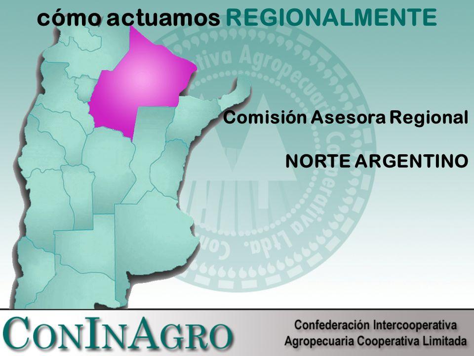 cómo actuamos REGIONALMENTE Comisión Asesora Regional NORTE ARGENTINO