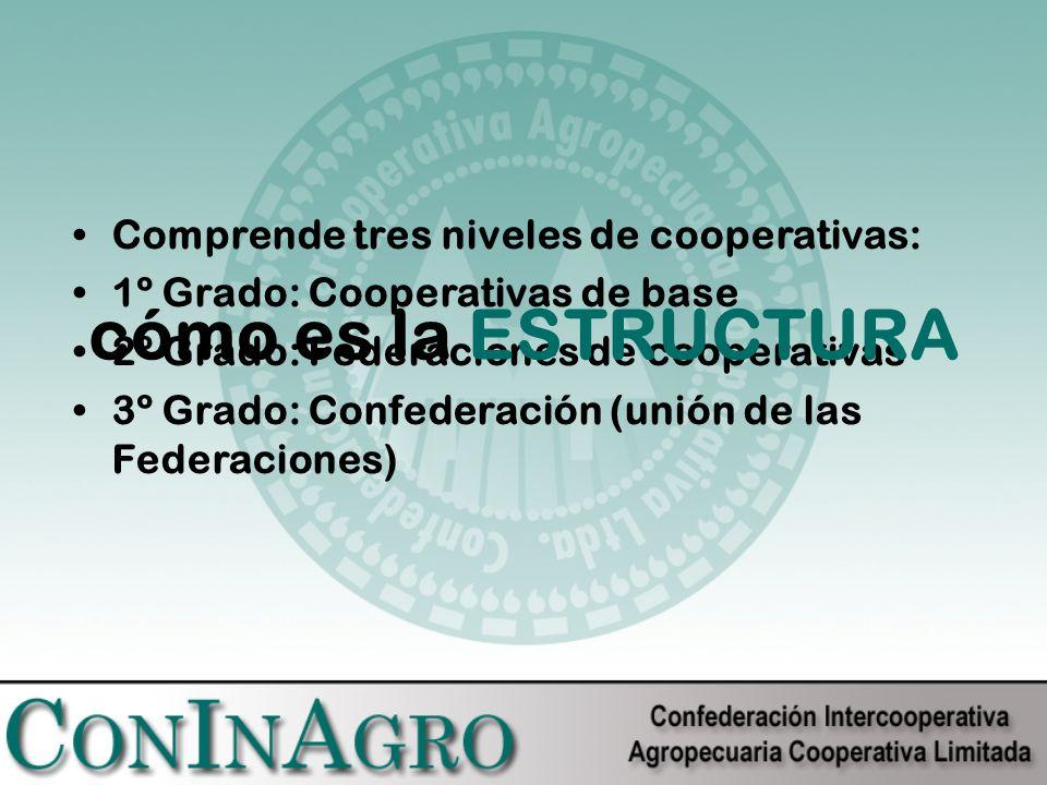 Comprende tres niveles de cooperativas: 1º Grado: Cooperativas de base 2º Grado: Federaciones de cooperativas 3º Grado: Confederación (unión de las Federaciones) cómo es la ESTRUCTURA